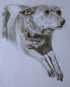 sm-sindy-drawing
