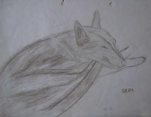 sm-sindy2-drawing